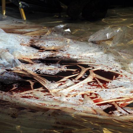 Performance Mímesis del genoma humano Manuel Pereda foto de escenografía sangre de cerdo y plastico